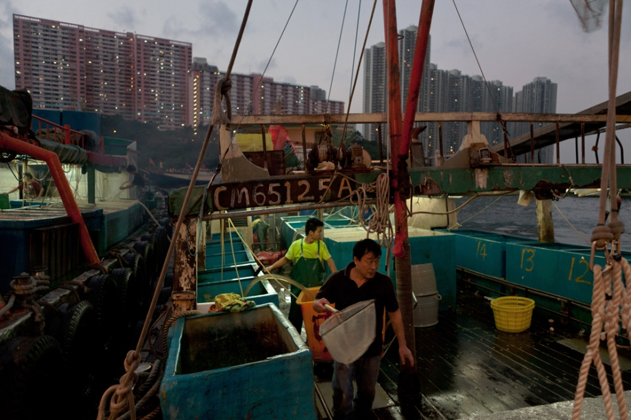 HONG KONG-ECONOMY-CULTURE-FISHING-SOCIAL